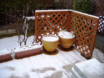 2010.夜は雪そして朝・・ 001.jpgブログ2.jpg