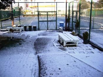 2010.夜は雪そして朝・・ 007.jpgブログ3.jpg